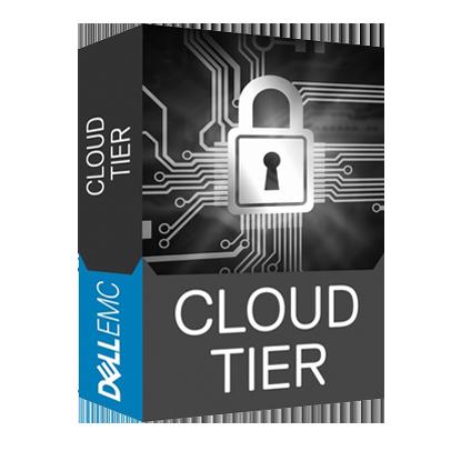 Data Domain 云层